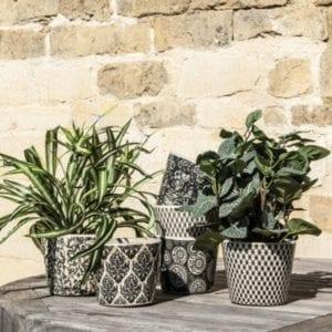 Dutch style flower pots